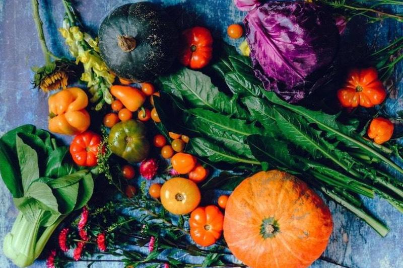 alimentation et ostéoporose